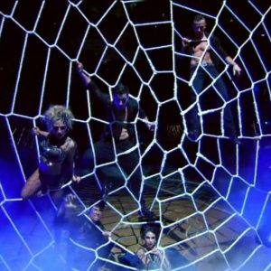 Spider Web Nets
