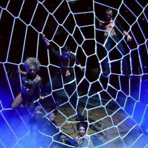 Spider Web Nets