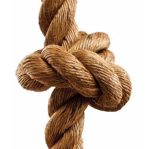 Big Knots | BK